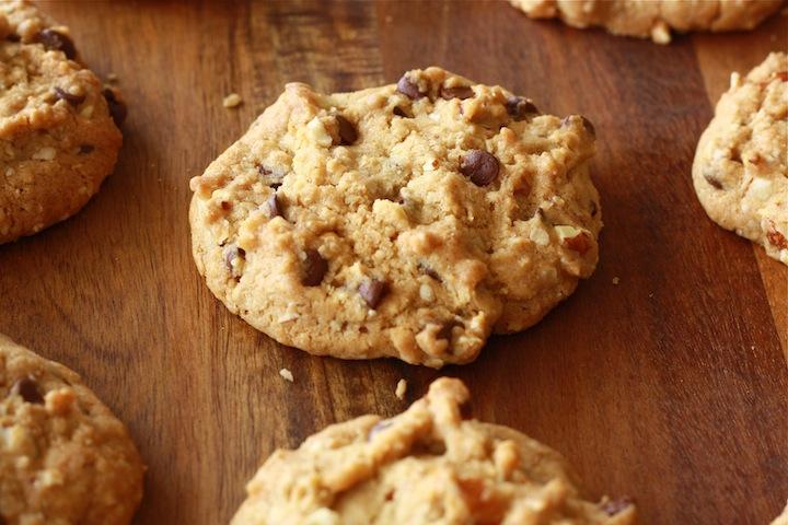 Cinnamon Chocolate Chip Cookies by SeasonWithSpice.com