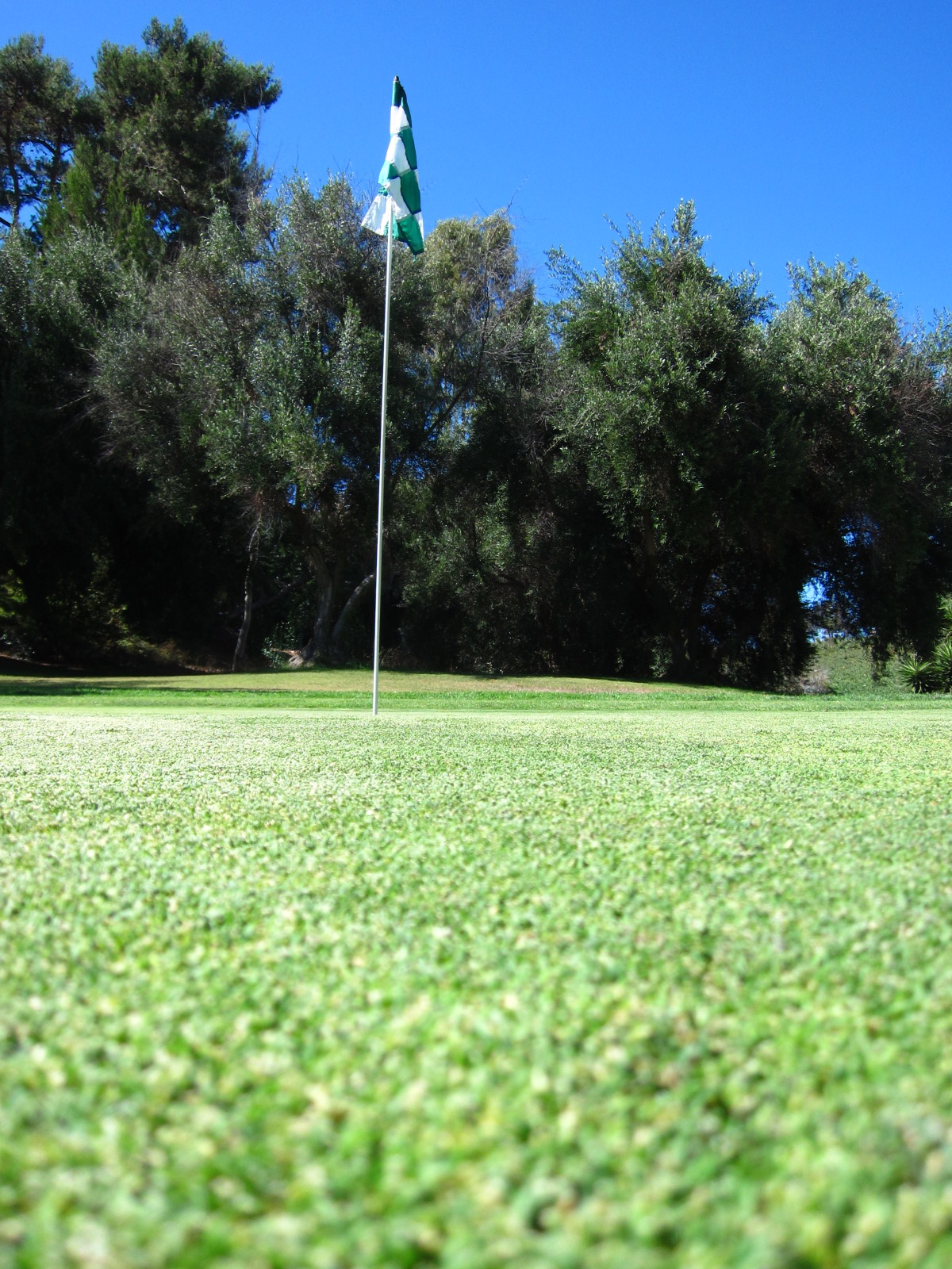 how to make a golf course profitable