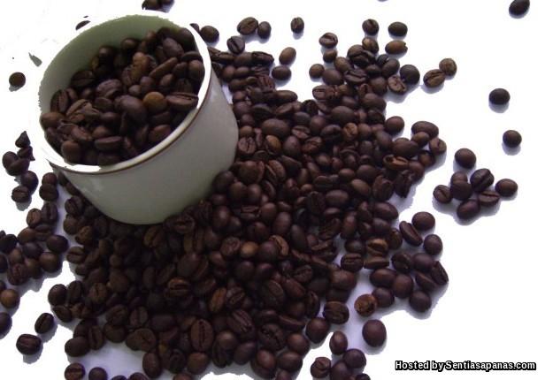 Sari kafein