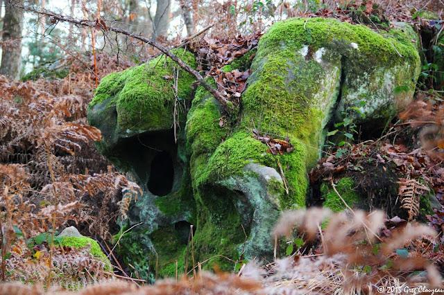 Crâne vert, Mont Ussy, Fontainebleau, (C) 2015 Greg Clouzeau