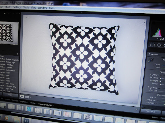 Computer screen with images from the Nbaynadamas pillow photo shoot