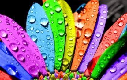 Beautyfull Rainbow