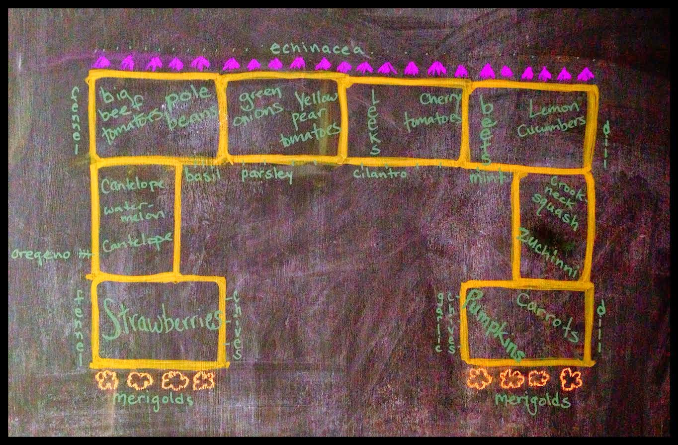 olivemydreams The Straw Bale Garden Planning