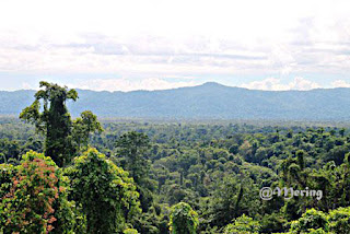 Bentang alam Kabupaten Sarmi