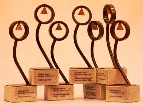Premi innovació 2014