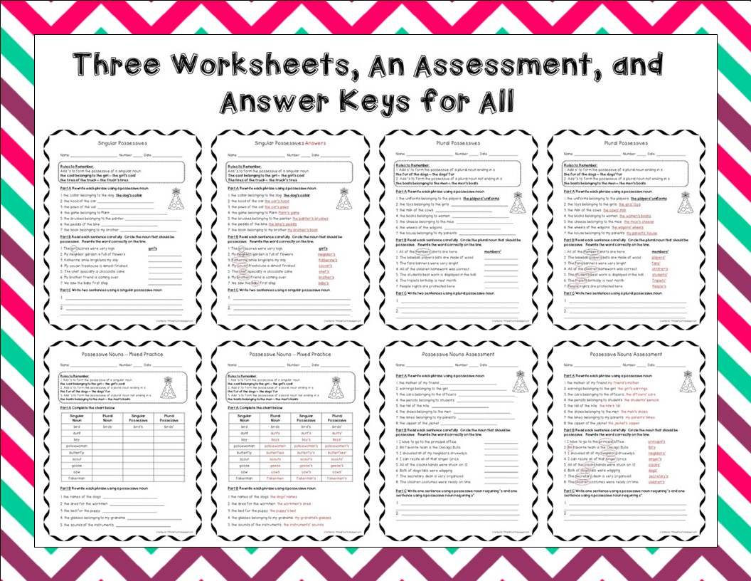 http://www.teacherspayteachers.com/Product/Possessive-Nouns-Posters-Task-Cards-Center-Practice-Pages-Assessment-1532177