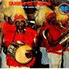 foto da capa do cd sambas de enredo 1980 grupo de acesso