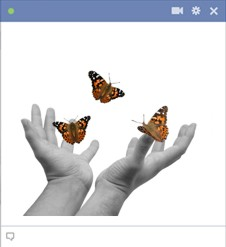 Butterflies Emoticon For Facebook
