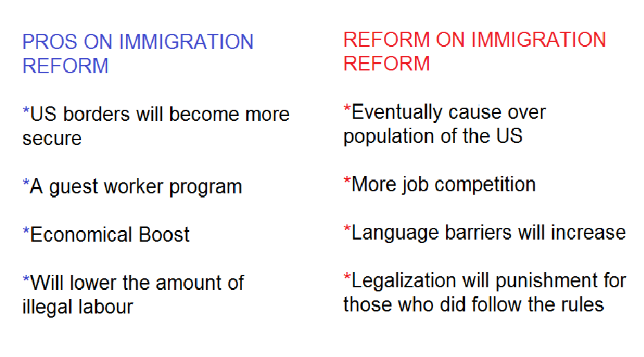 Immigration in the us essay