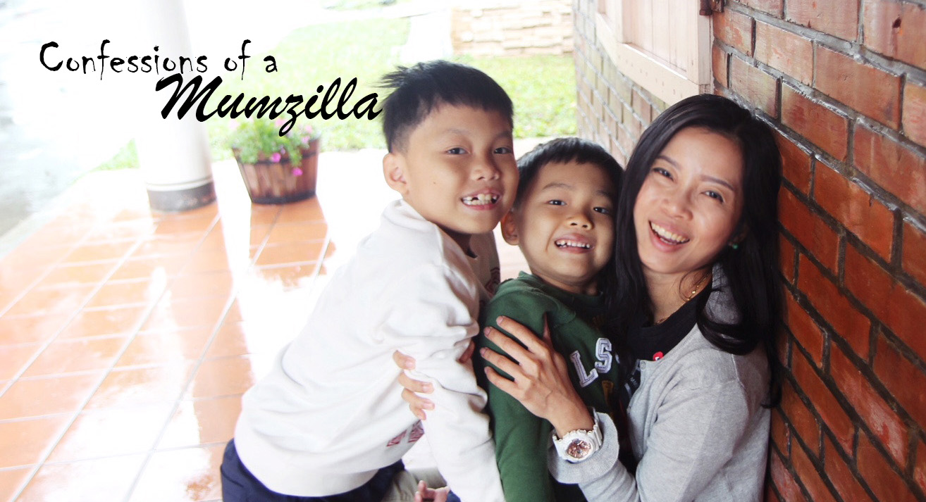 Confessions of a Mumzilla