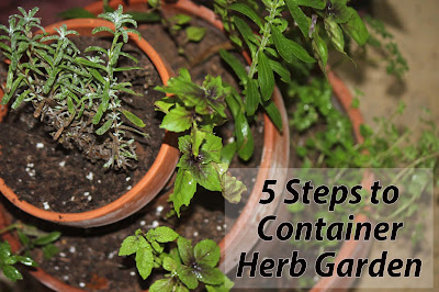 Florida Container Herb Garden