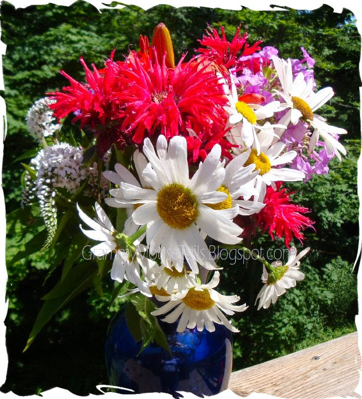 garden flowers - bee balm - white daisy aster - purple phlox photo