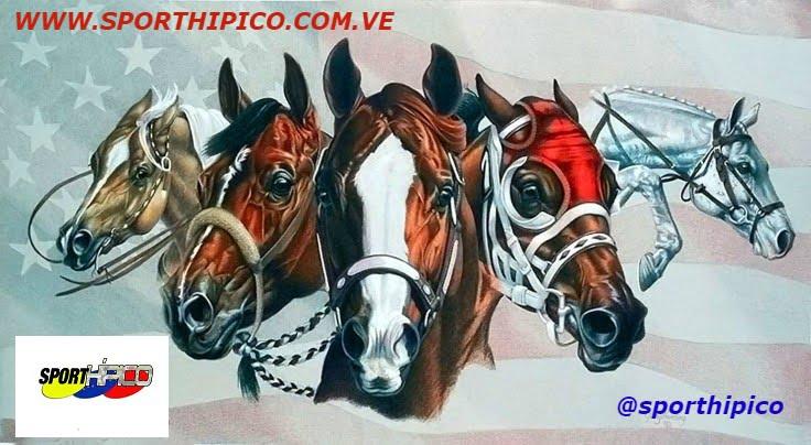 SPORT HIPICO