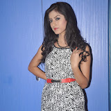 Ruby Parihar Photos in Short Dress at Premalo ABC Movie Audio Launch Function 4
