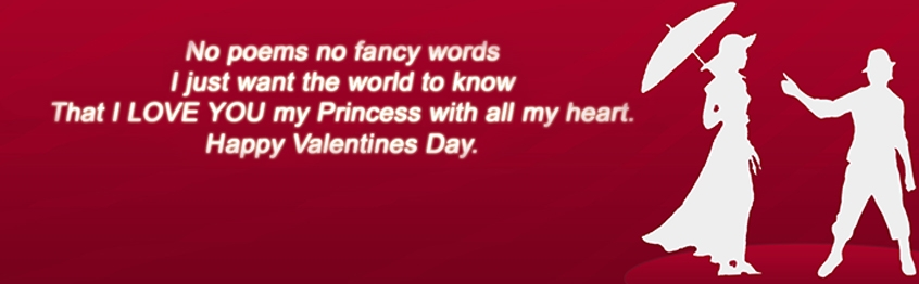 Happy Valentines Day 2014 Best Facebook Cover Photos