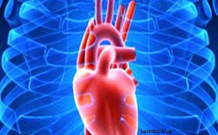 Mengenal Lebih Jauh Penyakit Jantung