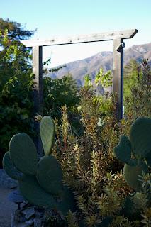 Big Sur Bakery cactus garden gate