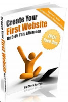Creat you first website book by chriss farell