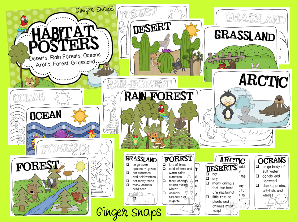 Boo In Zoo And Habitat Posters on Reptile Worksheets Preschool