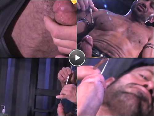 amateur gay hairy
