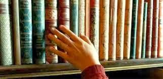 Link al Blog Mis Queridos Libros