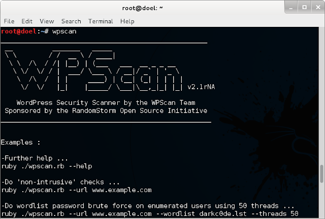 WPScan console