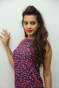 diksha panth sizzling photo shoot-thumbnail-17