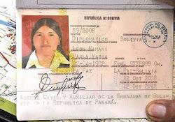 pasaporte falso extendido a Paola María León Mamani como agente civil