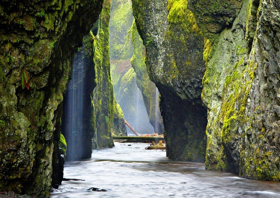 Visit The World The Beautiful Look Of Oneonta Gorge Oregon