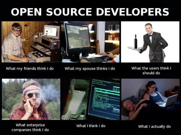 open source developer