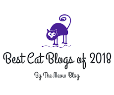 We were recognized as one of the best cat blogs of 2018