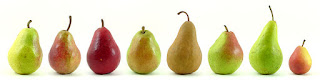 différentes variétés de poires