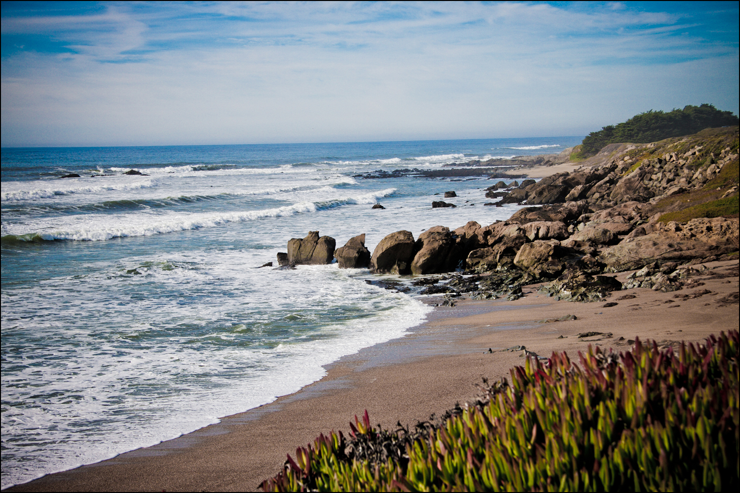 A beach home companion food photography recipes and for Surf fishing northern california
