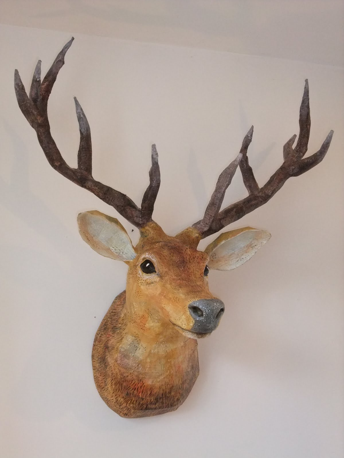 Pic New Posts Wallpaper Taxidermy