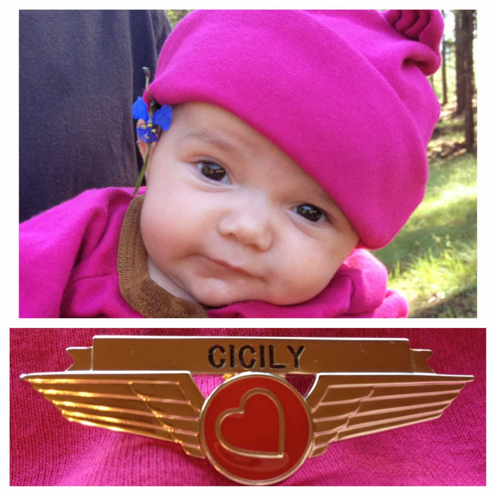 We have a new set of WINGS in the Family...