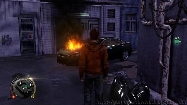 Wei Shen's car up in flames