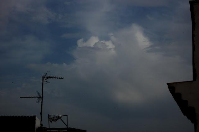 Seguimiento mayo 2012 DSCF5693