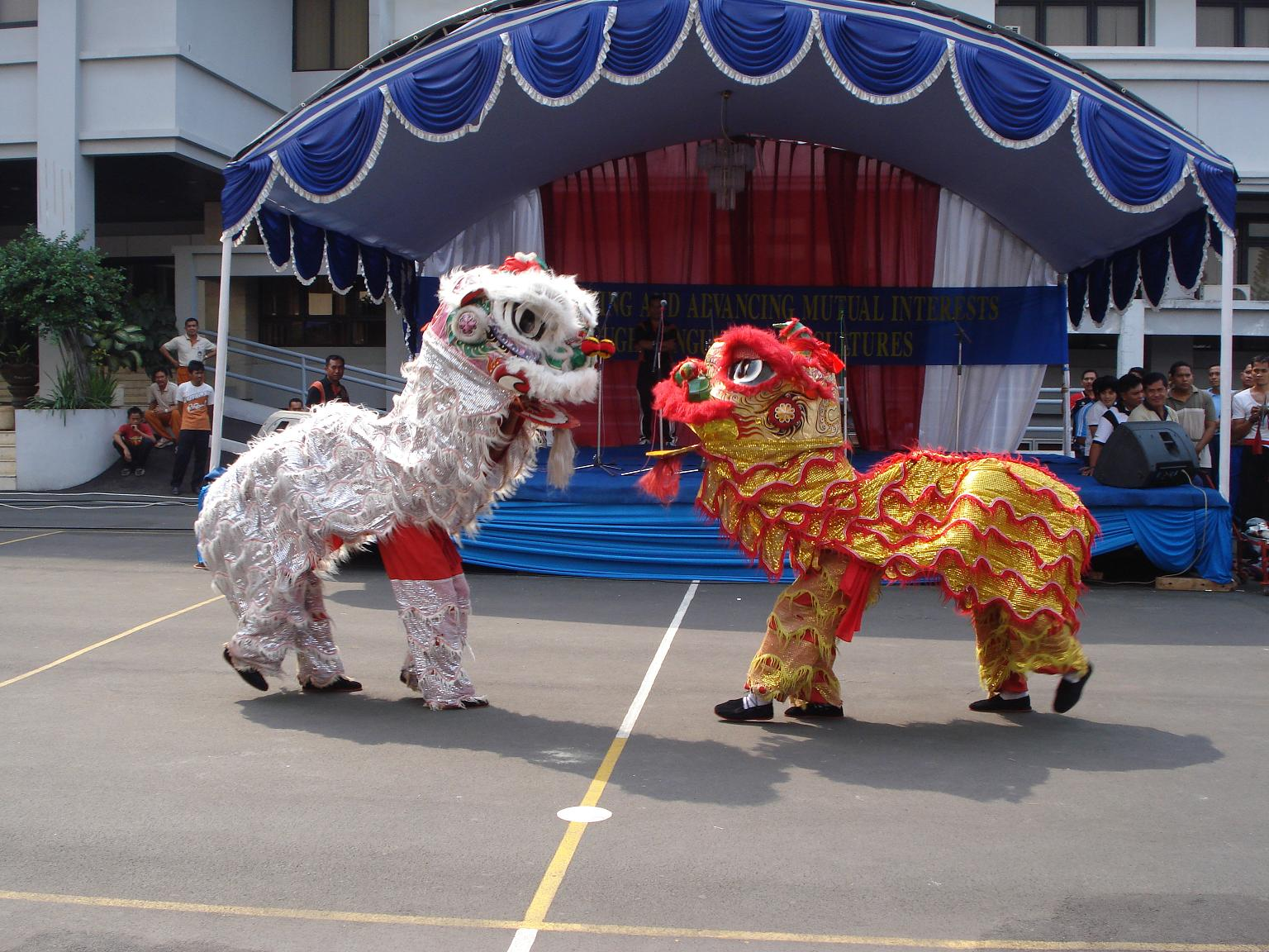 BBCnews: Millions prepare to celebrate Chinese Lunar New Year
