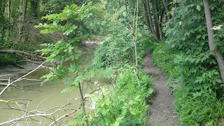 Lech Trails
