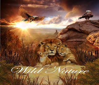 fantasy backgrounds, digital backgrounds, wild nature fantasy backgrounds