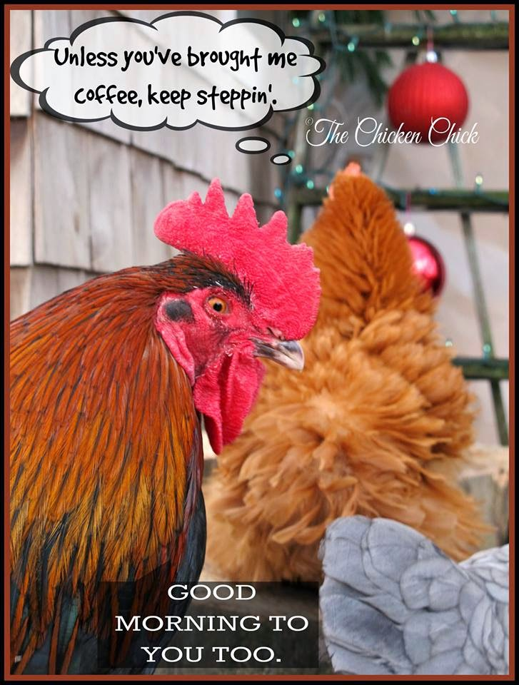 Unless you've brought me coffee, keep steppin'.
