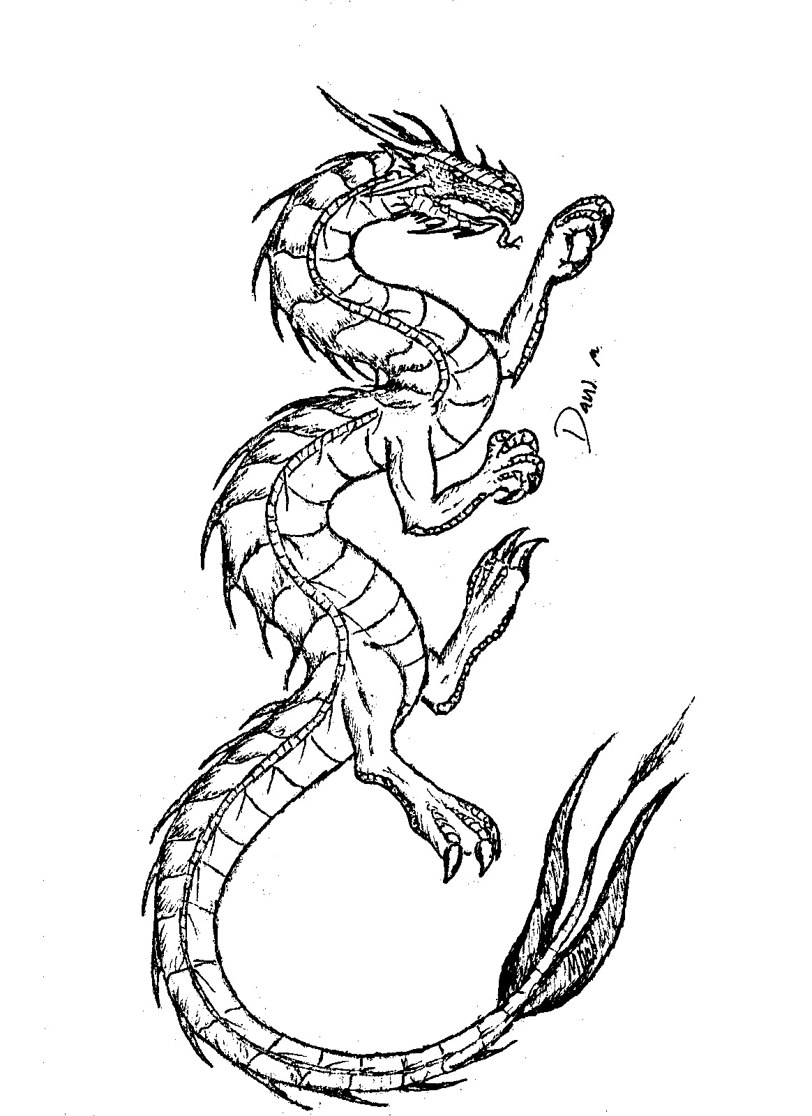2019 year style- Tattoo Dragon coloring pages pictures