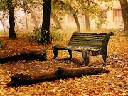 El otoño es tranquilidad . oto