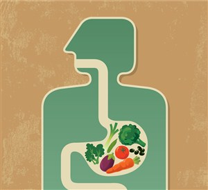 Meningkatkan Kesehatan Pencernaan