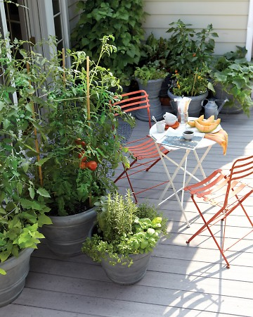 Small-Space Gadren Ideas : Garden Pot Basics