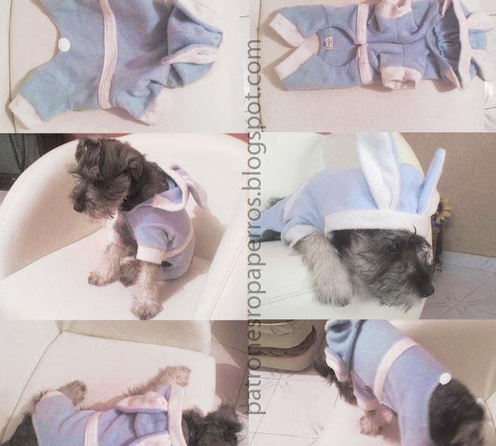 MASCOTAS: Cómo hacer pijama para perro