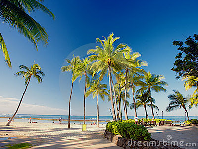 pictures of waikiki beach hawaii