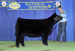 2013 National Western Stock Show