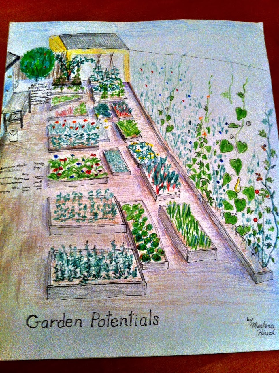 A Vision for the Lewis Garden