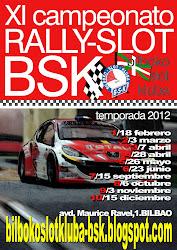 campeonato rally 2012BSK